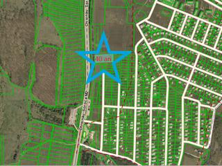 Teren 0,4 ha pentru construcții orhei