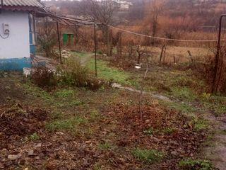 Teren de 8 ari. In centrul satului Nimoreni. 15 km de la Chisinau.Cu casa cadou.