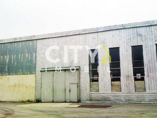 Se da in chirie spațiu comercial Chișinău, Ciocana 5000 m