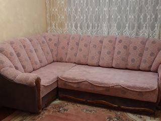 Coltart Comfort