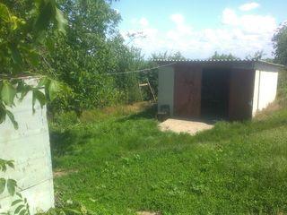Дом,гараж,погреб,хоз блоки для скота и птицы,большой участок,свет,вода,лес,озеро