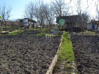 Vînzare, Lot de teren, Dumbrava