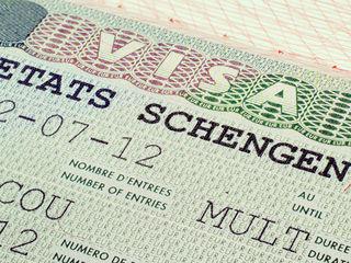 Польская Виза, Шенген, Viza Poloneza, Schengen