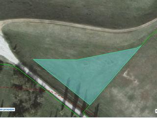 """Schimb - 22 ari pe malul riului Nistru, linga baza de odihna """"Prietenia"""", pentru baza agroturistica"""