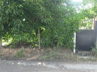 Дачный участок  в Вилла Долка 8 км от Кишинева