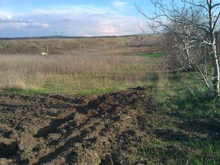 Urgent. 1.5 hectare la dtum principal si asfaltat cale ferata