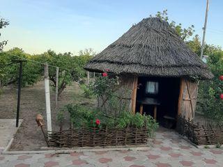 Casa de locuit Olanesti