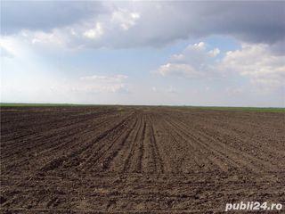 Cumpar teren agricol în raionul Dondușeni