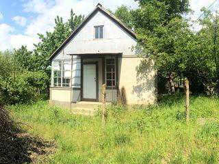 Vila de vara cu teren linga Dumbrava (Mugurel) 6 sote 12500 euro!