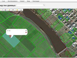 Продаю 80 соток земли сельхоз назначения, в р-н Яловень, сел.Ниморень (относится к сел.Малкоч)