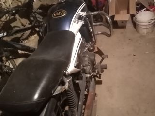 Alpha Moto RX