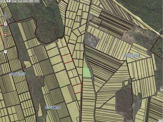Vânzare teren agricol! 3 ha!