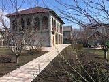 Casa buna in Suruceni