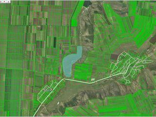 Консолидированный блок земли 100% ,30 га