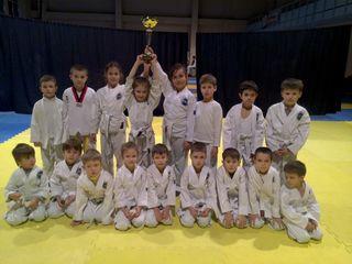 Judo,Taekwondo copii de la 6 ani riskanovka