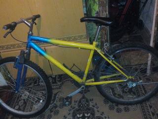 biciclet 650 lei