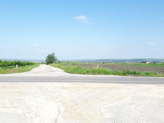 Pret nou! Teren agricol traseu Bacioi/Chisinau 0.2675 ha!