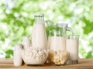 Vând produse lactate de vaca