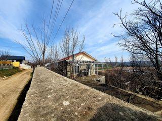 Lot pomicol cu casă în 2 nivele, 6 ari, sat. Suruceni