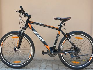 Chirie biciclete 24/24