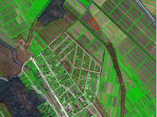 Teren agricol 48a in s.Hulboaca, com. Gratieşti cod cadastral 01551021049.