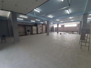 Сдаем офисно-торговое помещение под шоурум 280м2 на Отоваска! Первая линия!