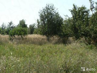 Cumpar teren agricol  30 km de la Chisinau
