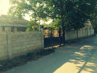 Urgent,urgent se vinde casa in Suruceni 15 km de la sectorul Buicani ,Продается дом в Сурученах