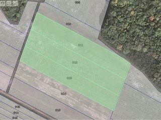 Arenda Teren agricol Peresecina 1,5 ha sub padure