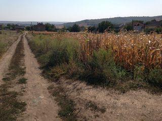 Lot de pamant in satul Mereni