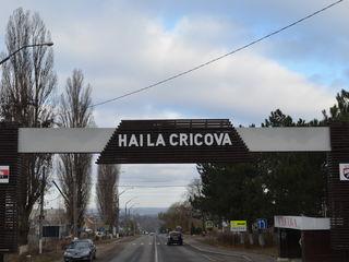 Spre Vînzare - Town House Cricova!
