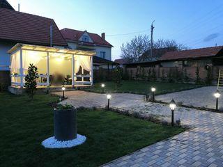 Top garden ! Servicii de grădinărit