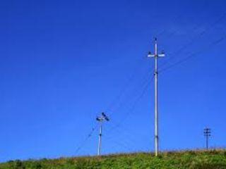 Electrician autorizat, electric, laborator electrotehnic, branțamente.