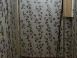 1 комнатная квартира в Новых Сороках