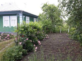 Casa Chetrosu raionul Drochia, casa Drochia Chetoru