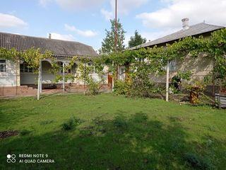 Se vinde gospodărie cu 2 case în R-ul Drochia