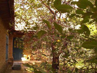 Продажа дома в с. Чишмикиой на Юге Молдовы.