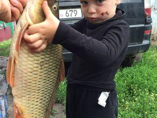 Рыбалка! Мы находимся в 10 км от города Рышкань в деревне Мошень