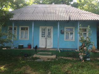 Se vinde casa cu teren (40 de sote)! Satul Obileni