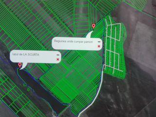 "Cumpar teren agricol in Peresecina ""Bazga,la scurta"""