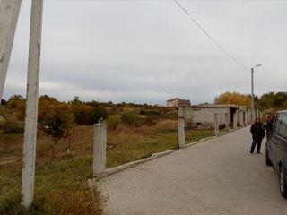 Teren Stauceni str. Dumbravei- 8 ari+9 ari