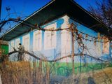 vind casa in s,Gribova 7km Drochia 22km Balti