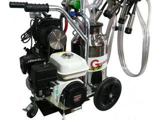 Aparat de muls Gardelina T240 AL PC motor 6.5/ garantie 1an - livrare gratuita-credit-agroteh