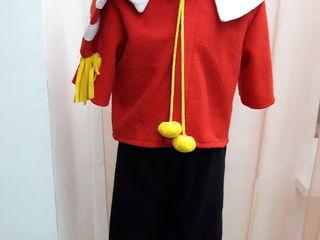 Карнавальные костюмы для всех (аренда, chirie)