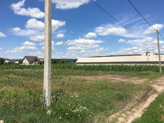Lot de construcție Costești