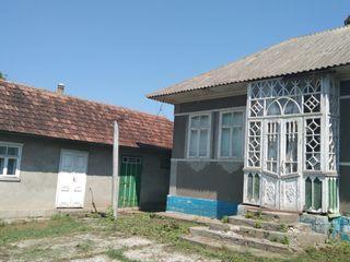 Продаю дом с участком в уникальном месте. Бричанский район, село Берлинцы.