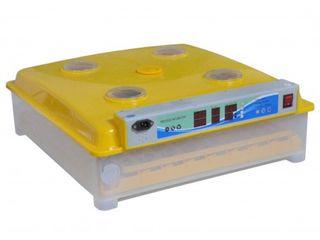 Incubator Ms-63/252(63 oua de gaina /252 oua de prepelita)-livrare-garantie 1an-credit-agroteh