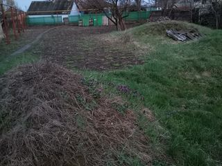 Продается дом в селе Кошница, Дубоссарского района(не Приднестровье)