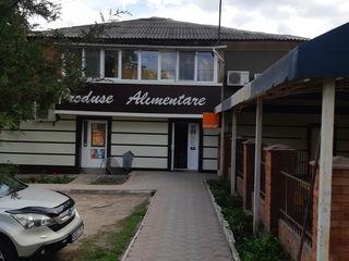 Se vinde Magazinul  alimentar cu Terasa  Albinuta