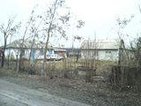 Дом в Чобановке(Гринауцы)Рыш.Район